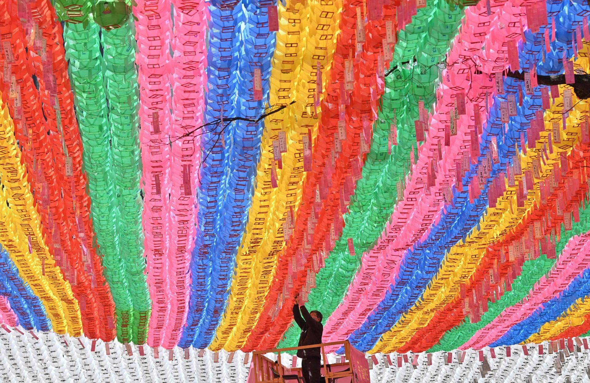Un operaio del tempio attacca un biglietto da visita con un augurio dei seguaci buddisti a una lanterna di loto, prima del compleanno di Buddha al Tempio di Jogyesa